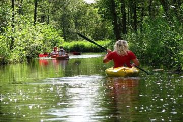 Canoe safari Weerribben