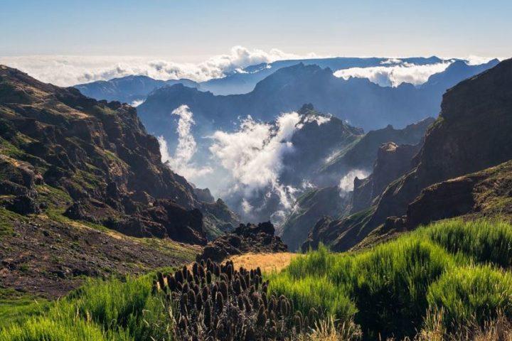Farewell Madeira